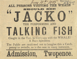 Advert for Jaco the Performing Fish